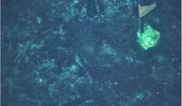 sea floor volcanoes