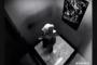 فتاة محجبة تلقن شابين درساً قاسيا داخل المصعد