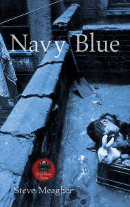 Navy Blue Cover