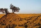 Taklamakan_Desert_China-01