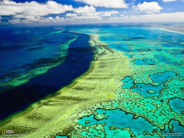 صورة جوية للحاجز المرجاني العظيم