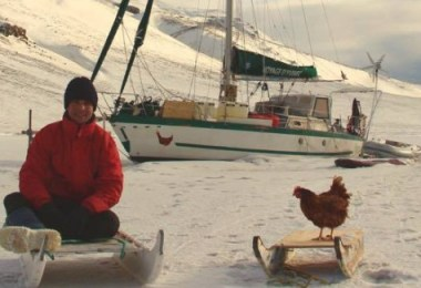 مسافر مع دجاجة  1