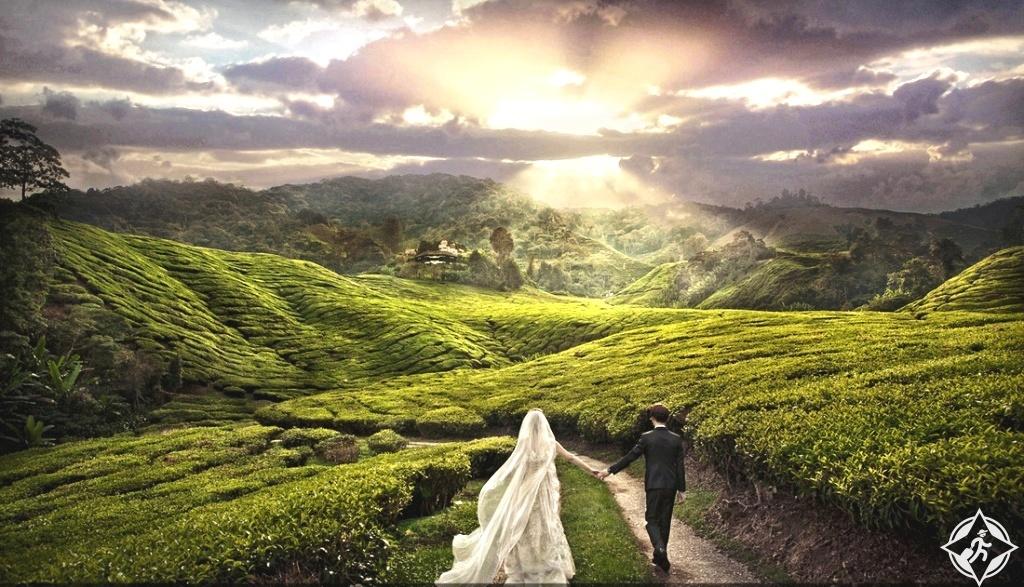 أفضل وجهات شهر العسل في ماليزيا .. المدة المثالية وأوقات الزيارة
