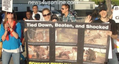 PETA demonstrators try to make their point in front of Staples Center in Los Angeles./Dennis J. Freeman/news4usonline.com