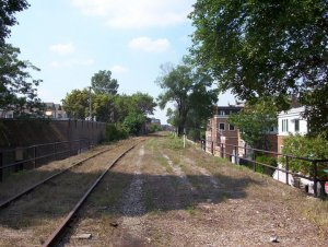 View from top of Bloomingdale Trail Chicago