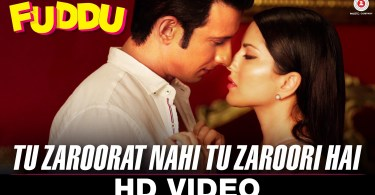 Tu Zarorat Nahi Tu Zarori Hai Video song Download