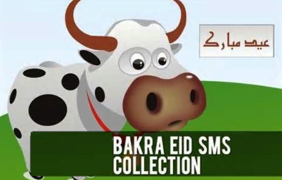 Latest Funny Bakra Eid (Eid Ul Azha) Sms Text Messages