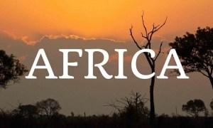 D-Africa-710x315