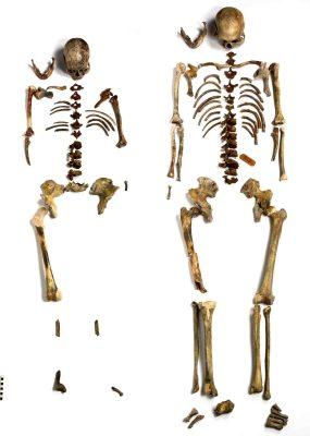 Doppelgrab von Bonn-Oberkassel: Die menschlichen Skelette wurden 1914 zusammen mit den Resten eines Hundes bei Steinbrucharbeiten an der Rabenlay gefunden. © Foto: Jürgen Vogel/LVR-LandesMuseum Bonn