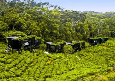 """Während der Sri Lanka Rundreise """"Naturerlebnis Regenwald"""" übernachten Gäste in der innovativen Rain Forest Eco Lodge. © TUI"""