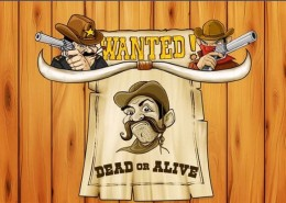 "Newtown Casino Cowboy Slot Game ""Wanted Dead or Alive"" !"
