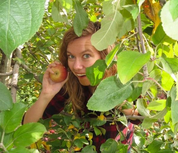 applepicking-closeup