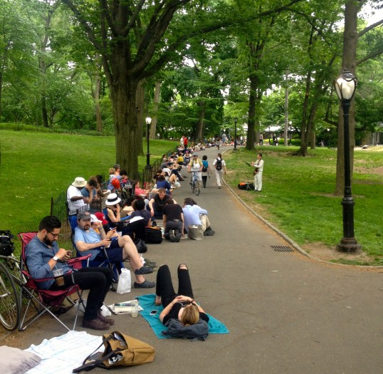 shakespeare in the park line