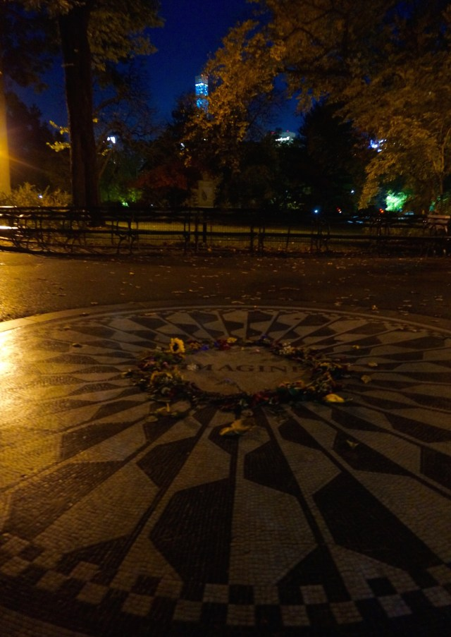 central-park-night-imagine