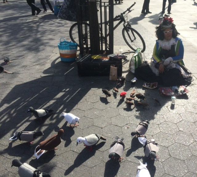 mother-pigeon-union-square