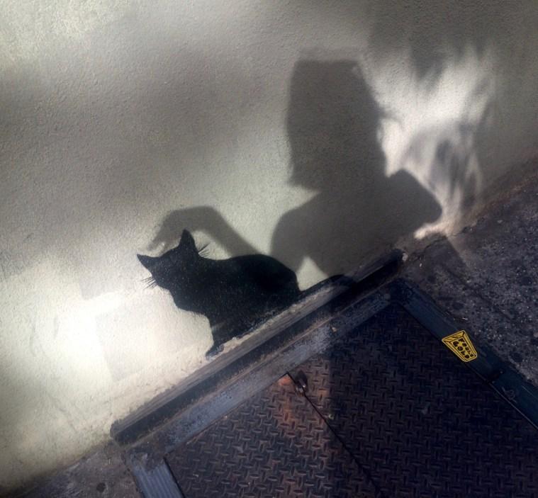 black cat street art soho