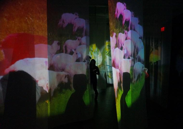 pipilotti-rist-new-museum-nyc-2016