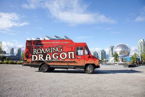 roaming dragon