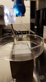 1er-test-bioprinting-25112016