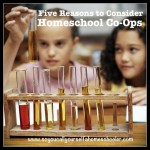 Five Reasons to Consider Homeschool Co-Ops