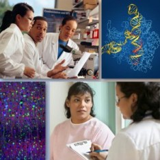 Montage of researchers, neurons, and  a molecular structure