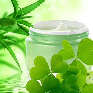 Green Clover and Aloe Fragrance Oil