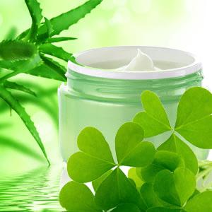 Green Clover and Aloe Fragrance Oil