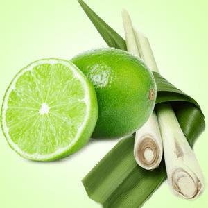 Lime Citronella Fragrance Oil