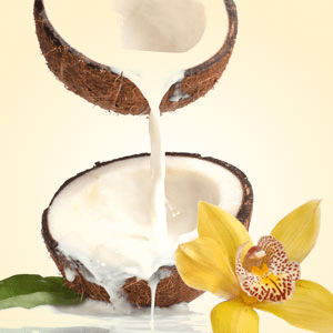 NG Coconut Vanilla Type Fragrance Oil