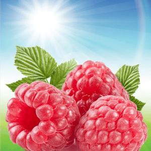 Sun Ripened Raspberry Fragrance Oil