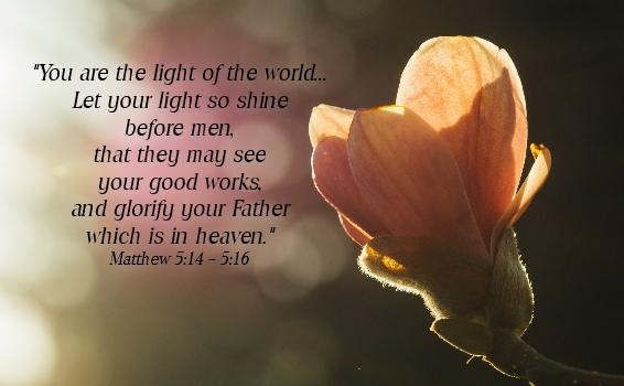 Study God's Word - Practice Love