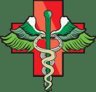 niagara-seed-bank-logo_lowerlet_50t