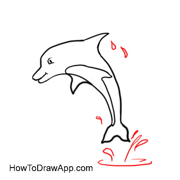 How to draw a dolphin 08