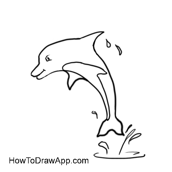 How to draw a dolphin 09