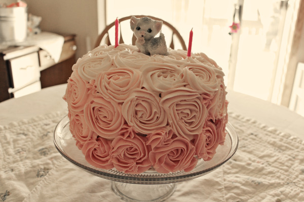 Cake decorating inspiration: vintage rose & kitty cake