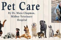 Pet Care Niceville Fla