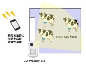 「家畜健康管理サービス」使用イメージ