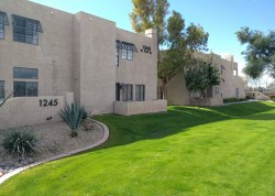 Small Of Lofts At Rio Salado