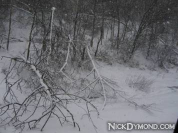 NickDymond.com-Winter-Is-Awesome (10)