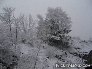 NickDymond.com-Winter-Is-Awesome (4)