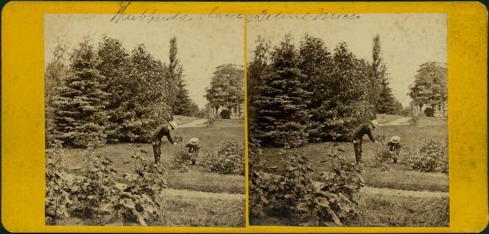 hubbard-gardens-jex-bardwell