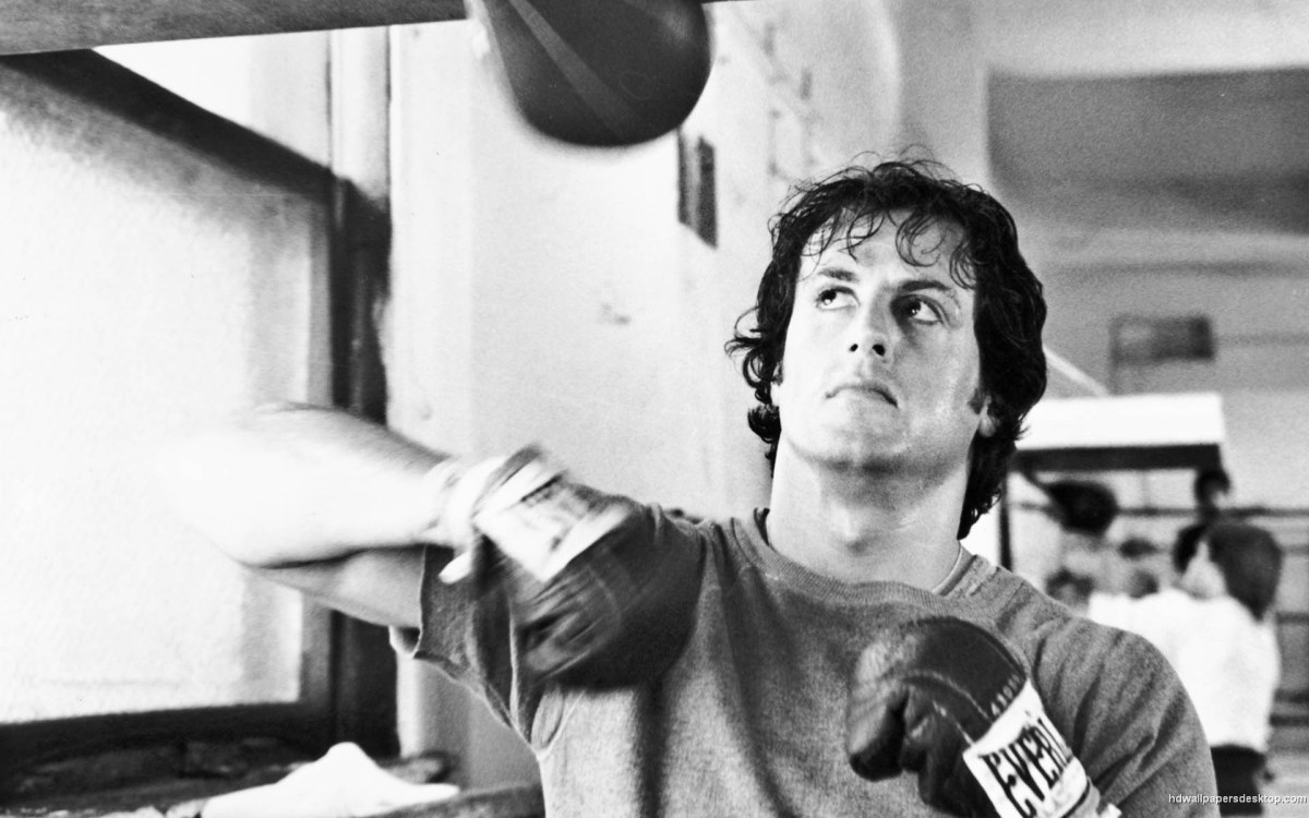 Why We Love Rocky