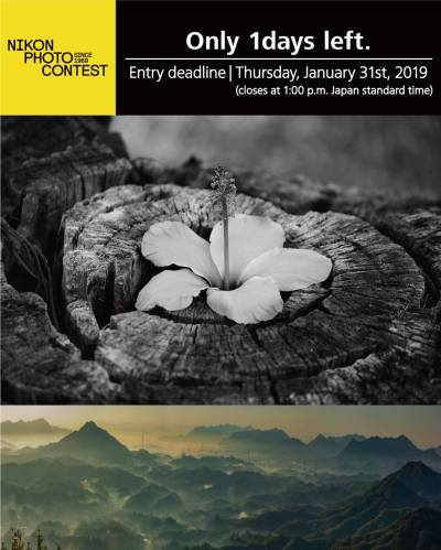 The 2018-2019 Nikon Photo Contest ends tomorrow - Nikon Rumors