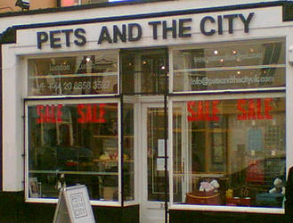 PETS AND THE CITY