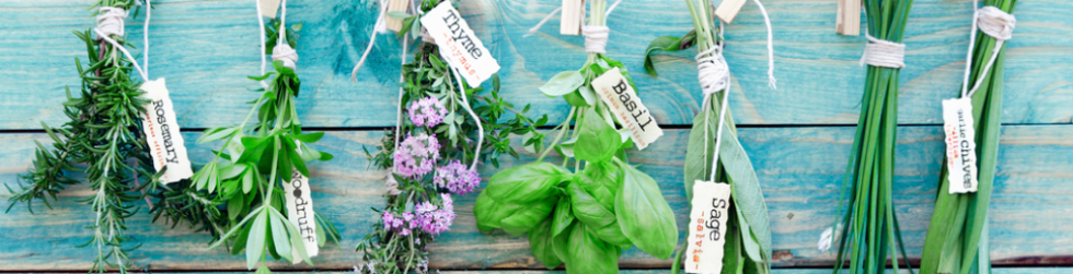 cropped-cropped-herbs-e14567568057311-1.png