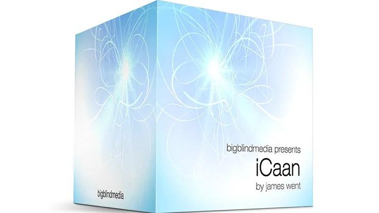 iCaan by James Went