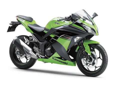 Ninja 250R#30
