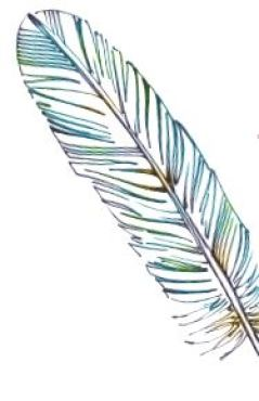 Writing Recovery feather
