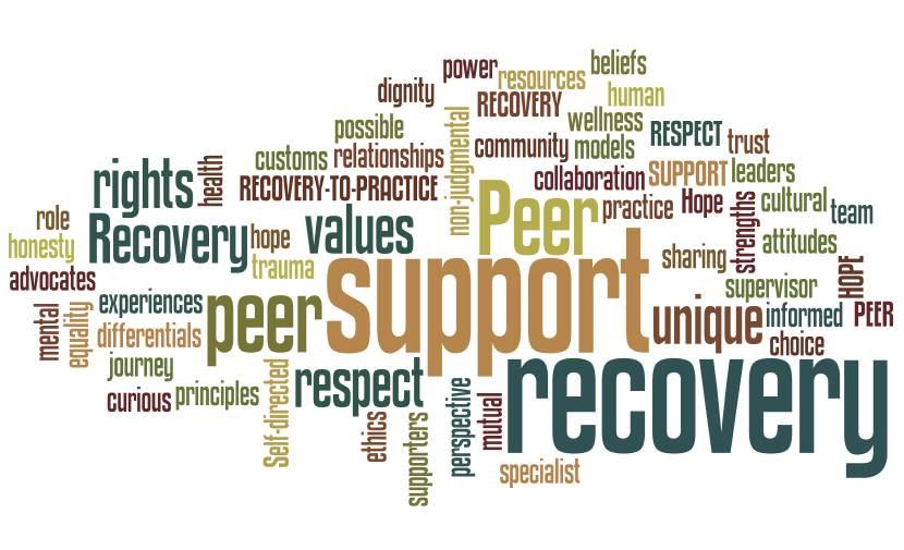 Peer-Support-Training1