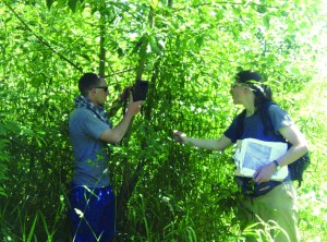 Wildlife monitoring equipment installation in the Ohop. Photo: Nisqually Indian Tribe Natural Resources Department